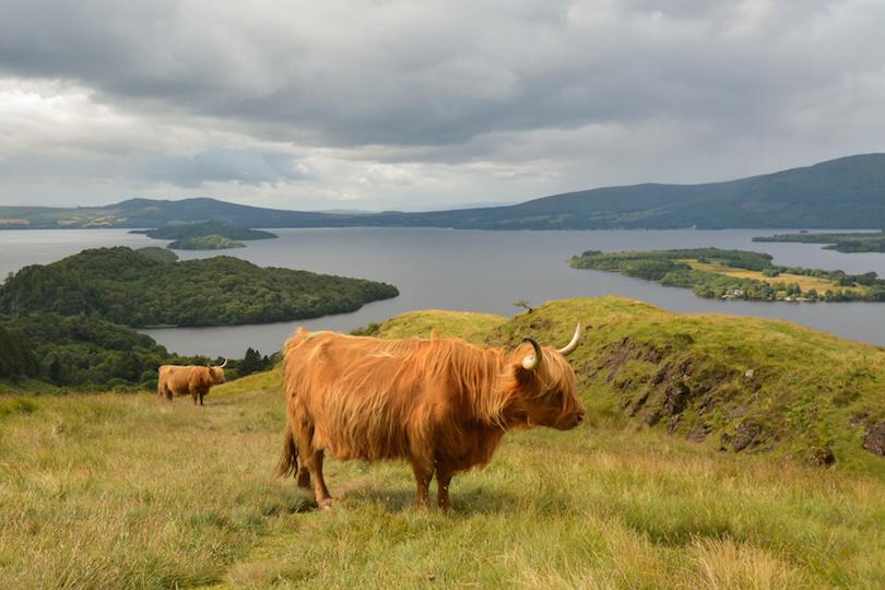 Loch Lomond és Trossachs Nemzeti Park