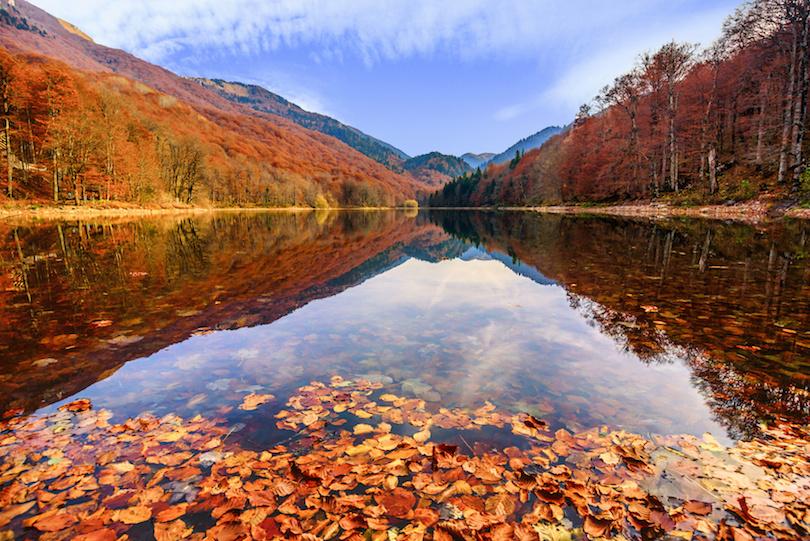 Biogradska Gora Nemzeti Park