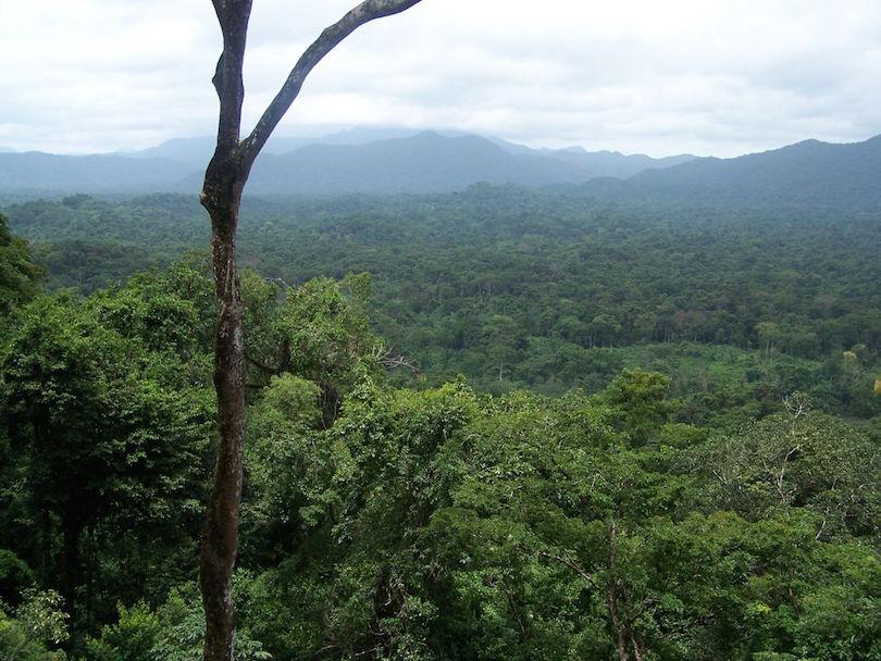 Río Plátano Bioszféra-rezervátum