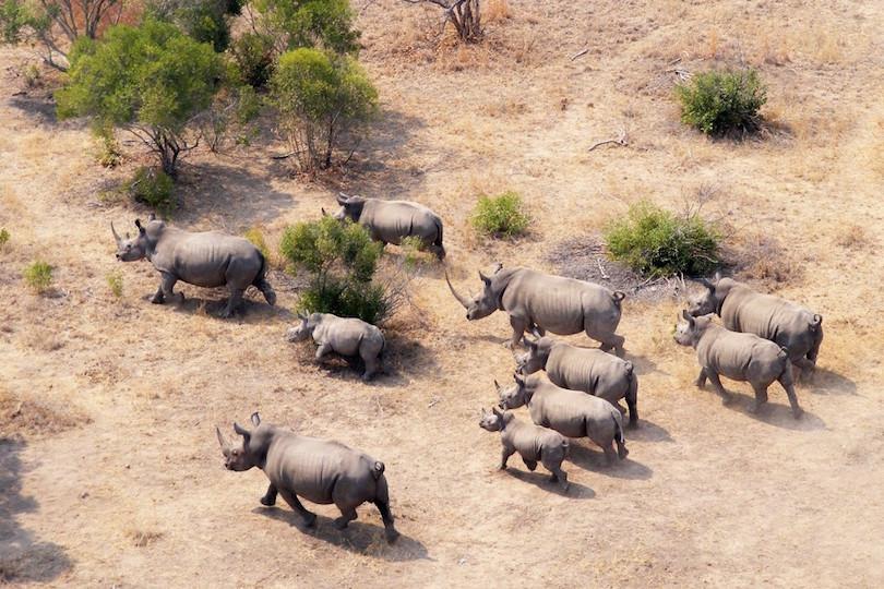 Kruger Nemzeti Park