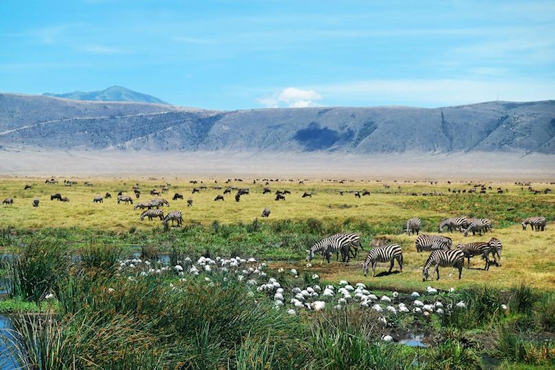 Ngorongoro Természetvédelmi Terület