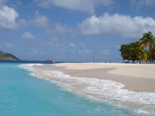 Palm Island (Pálmafa-sziget)
