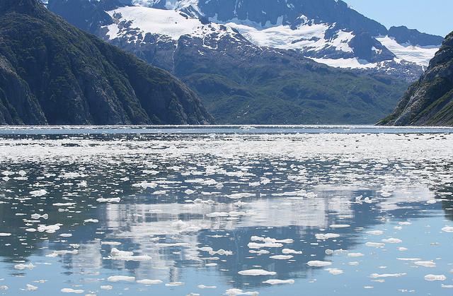 Kenai fjordok