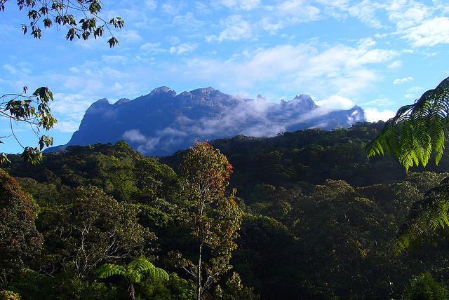 Kinabalu-hegy