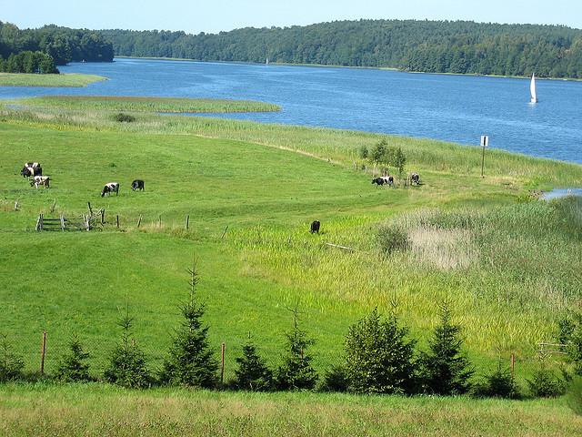 Mazuri-tavak vidéke