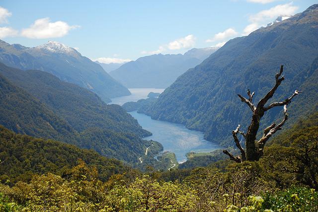 Doubtful fjord