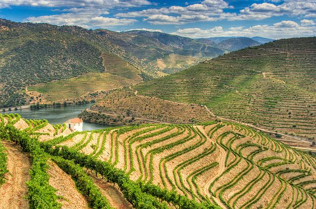Douro-völgy