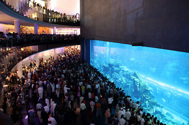 Dubai Mall Akvárium (2,64 millió gallon)