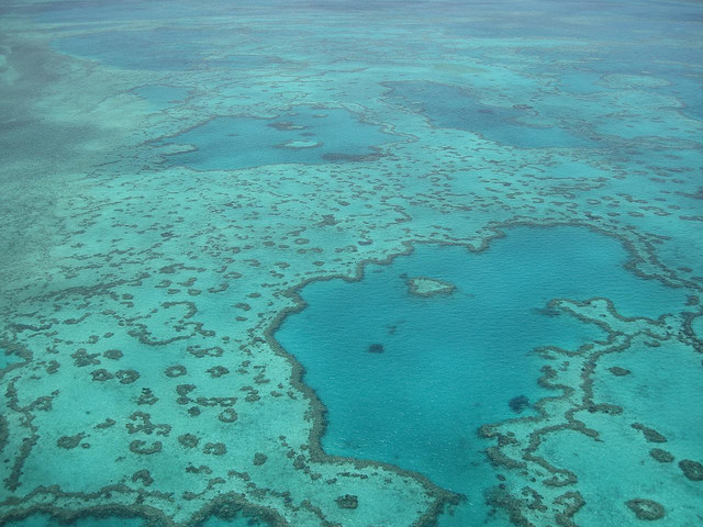Nagy Korallzátony (Great Barrier Reef)