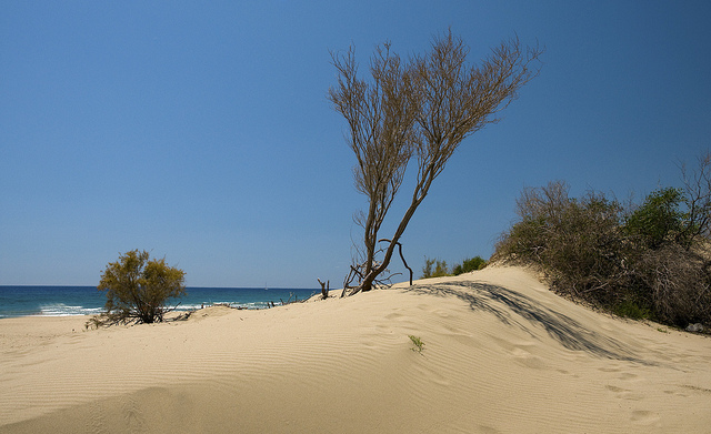 Patara strand