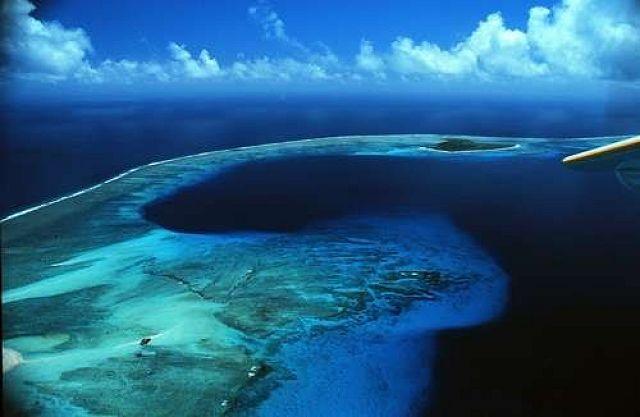 Bikini-korallsziget